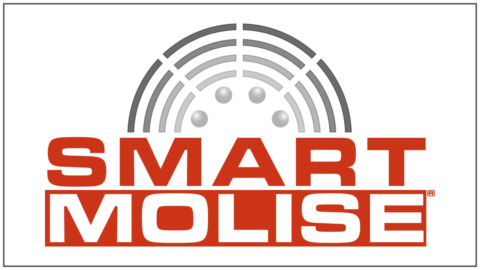 promediart_portfolio_logo-design_SMART-MOLISE